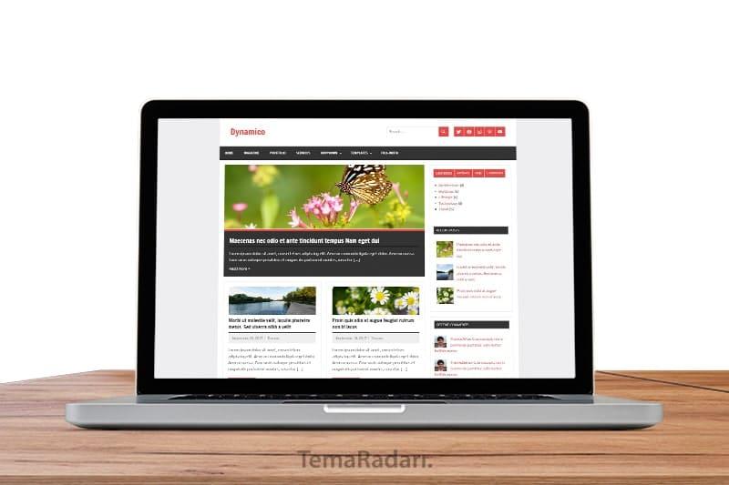 WordPress Ücretsiz Blog Teması